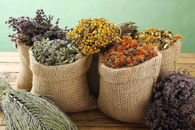 Бизнес идея — выращивание лекарственных растений