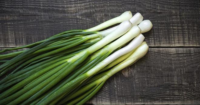 Бизнес идея по выращиванию зеленого лука