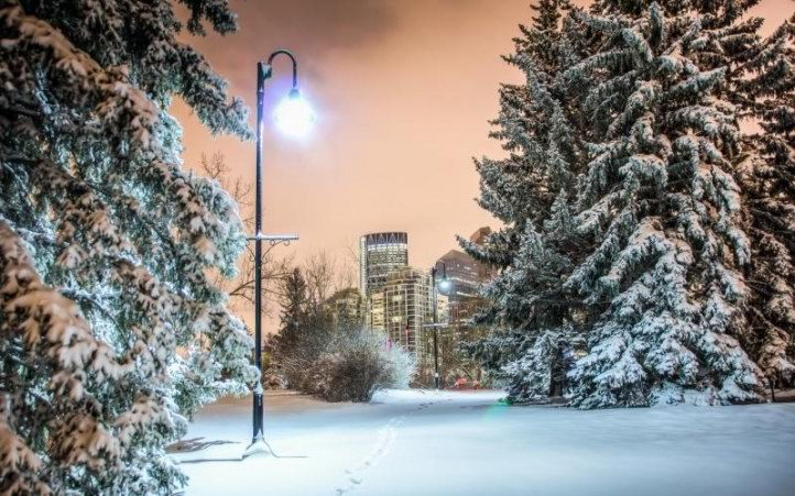 Пять бизнес идей для зимы