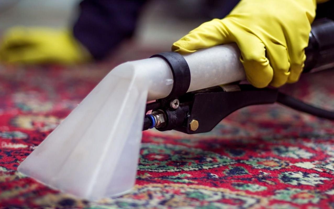 Бизнес — идея: чистка ковров на дому
