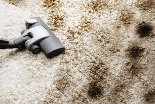 Бизнес - идея: чистка ковров на дому